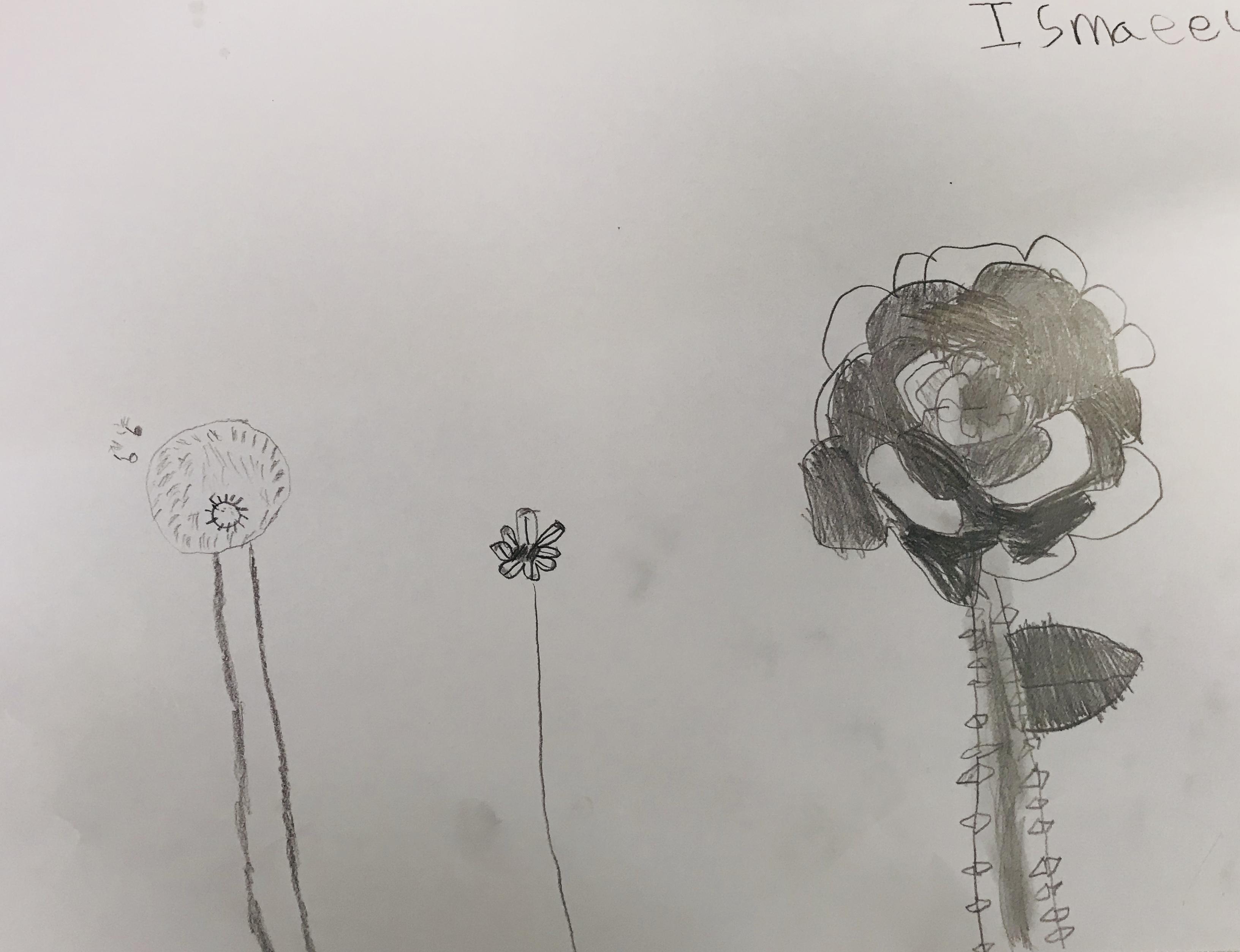 FlowersIsmaeel.jpeg
