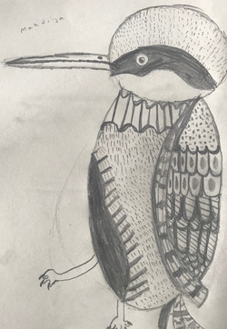 Woodpecker2.jpeg