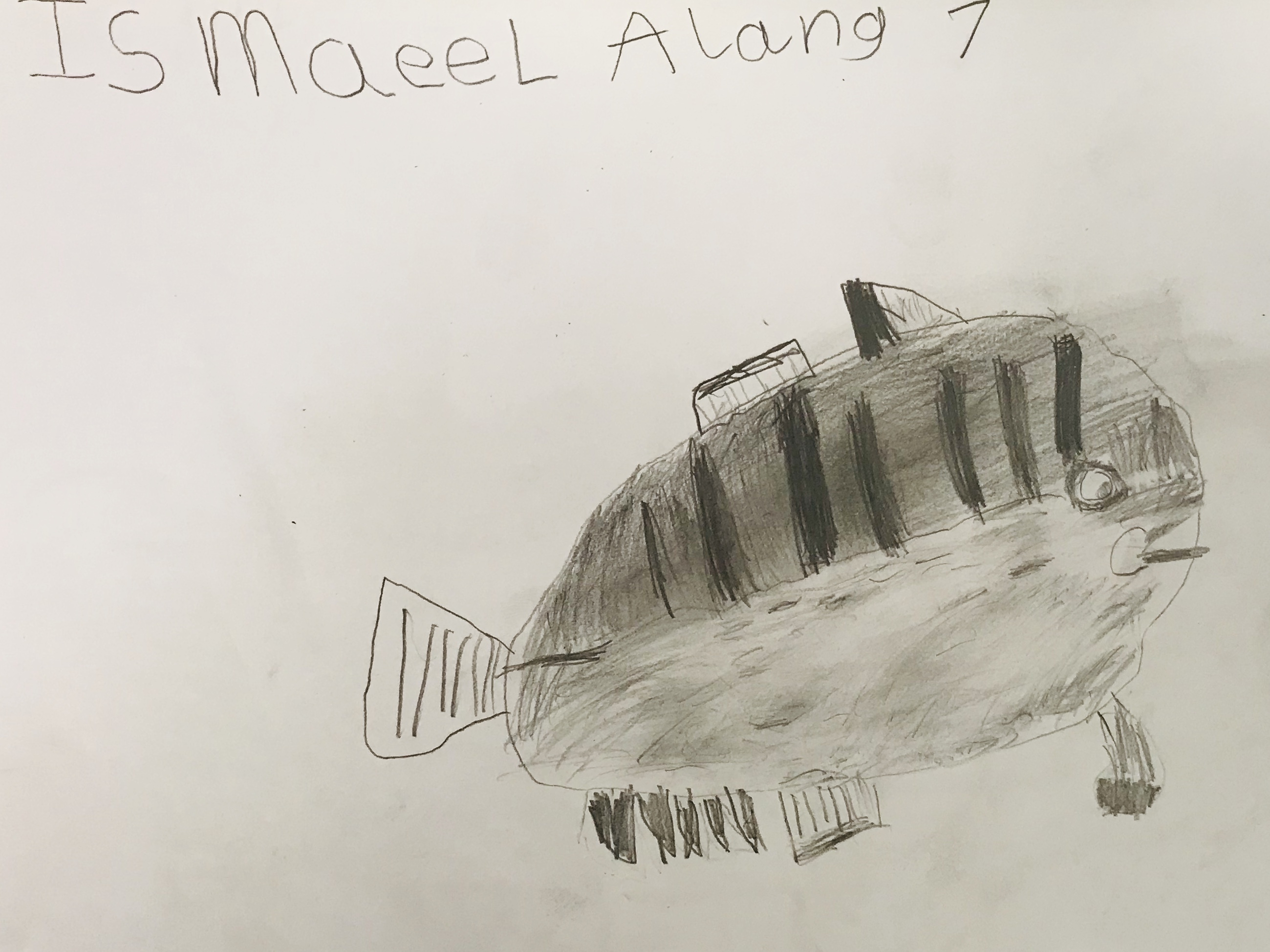 Ismaeel7fish.jpg