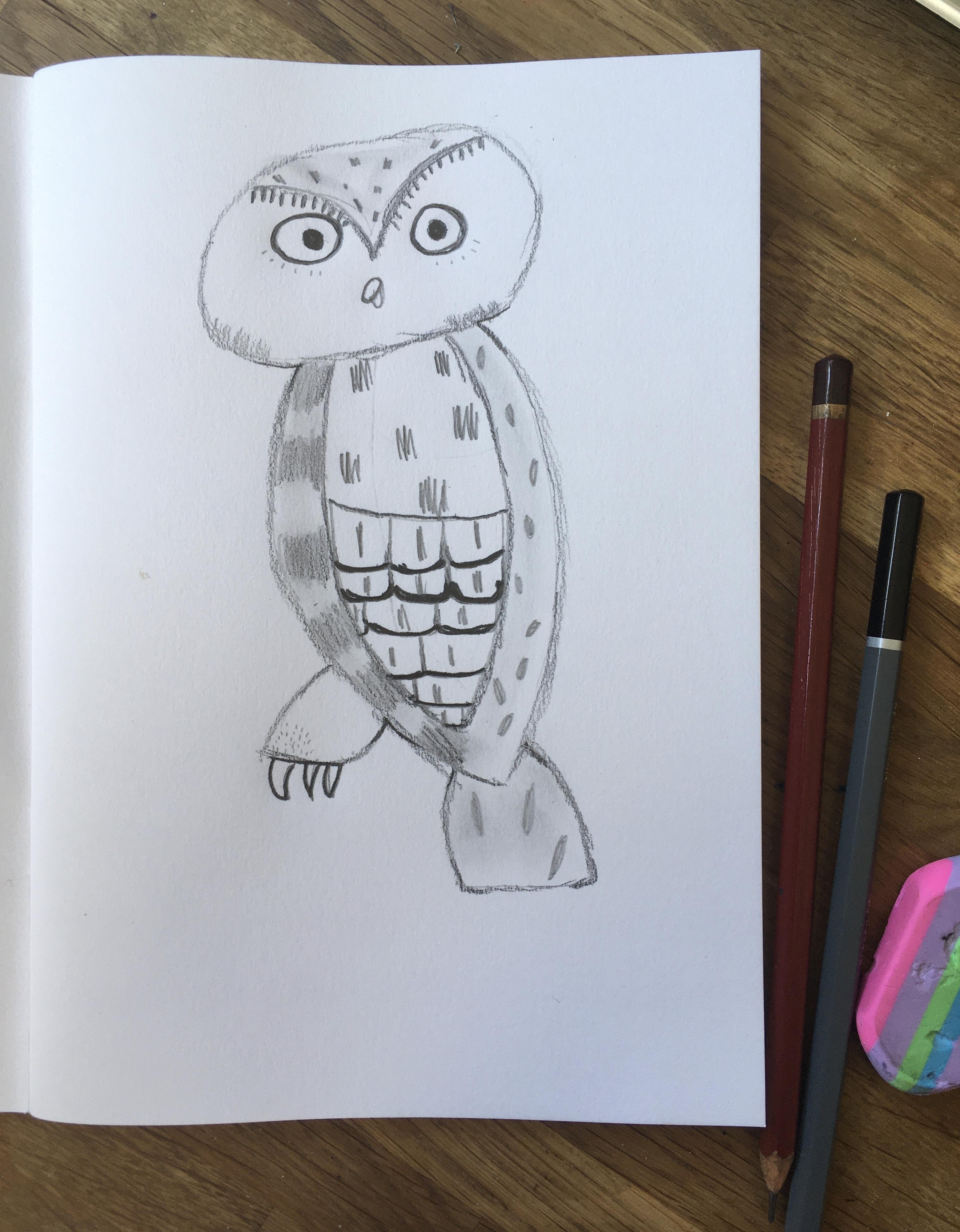 PP Snowy Owl(1).JPG