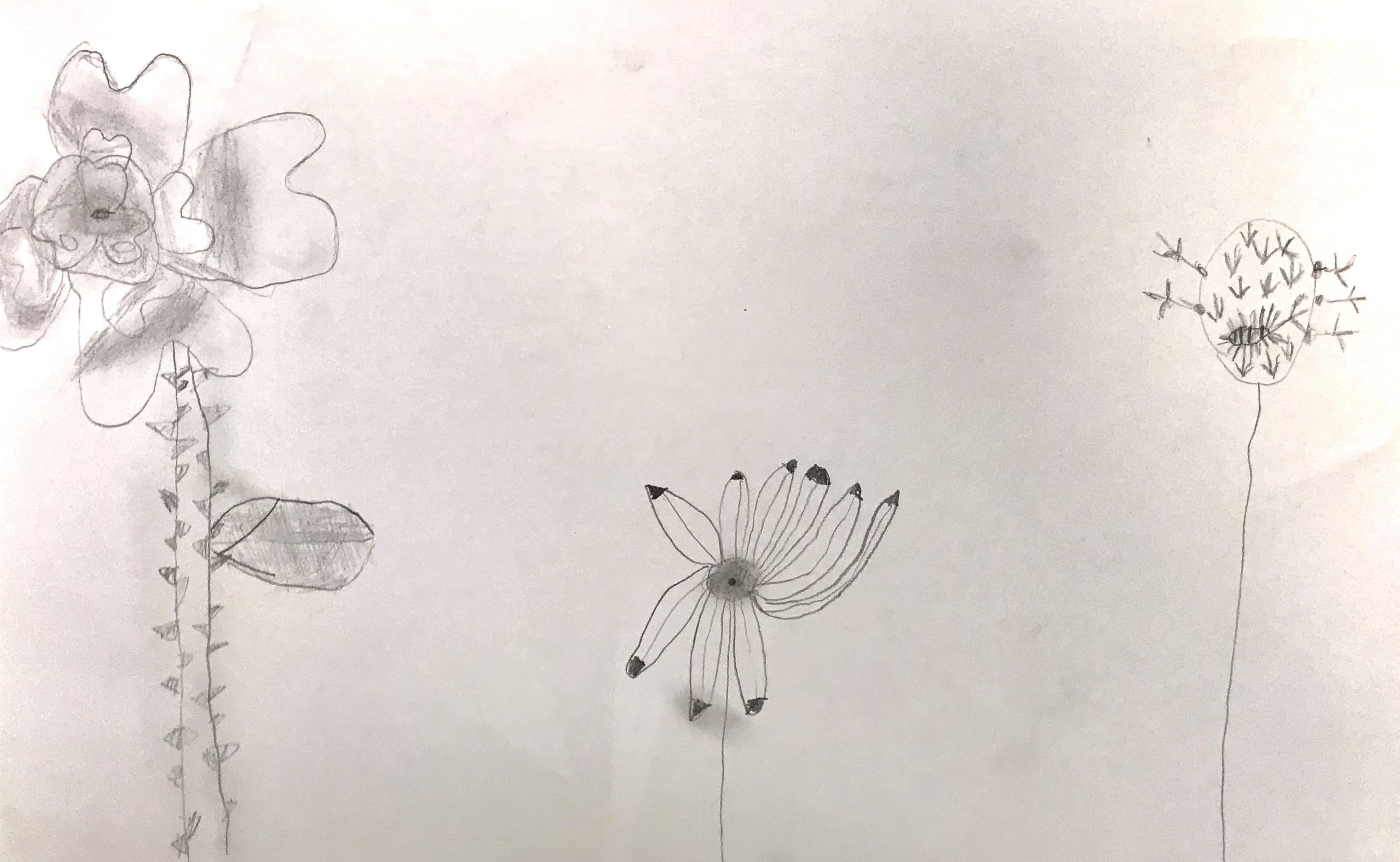 Flowers6.jpeg