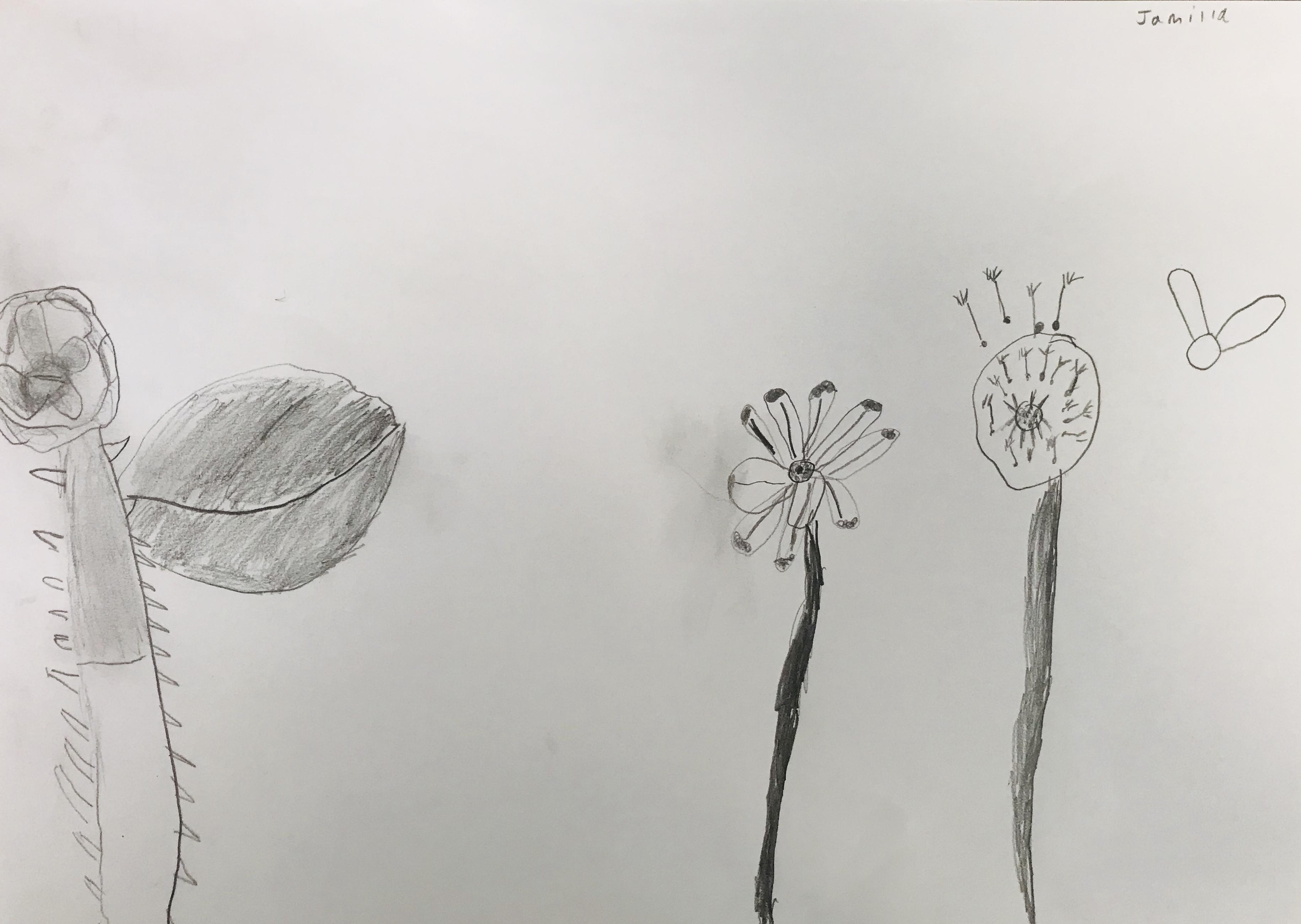 Flowers3.jpeg