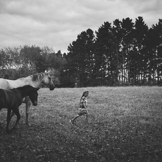Imogen Horses-9241_websize.jpg