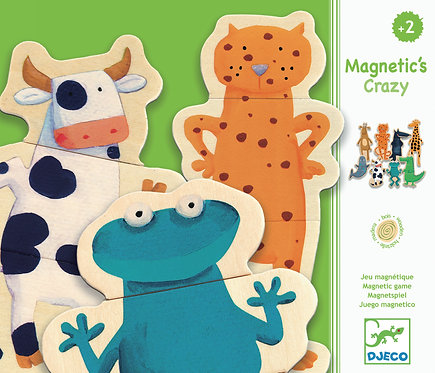 DJECO- Crazy wooden magnets