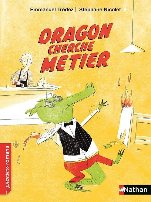 Nathan- dragon cherche métier