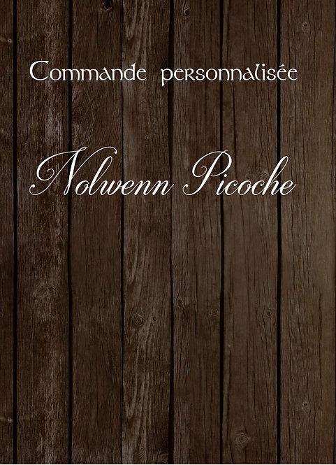 Nolwenn Picoche