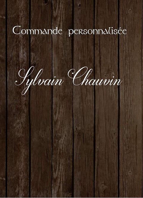Sylvain Chauvin