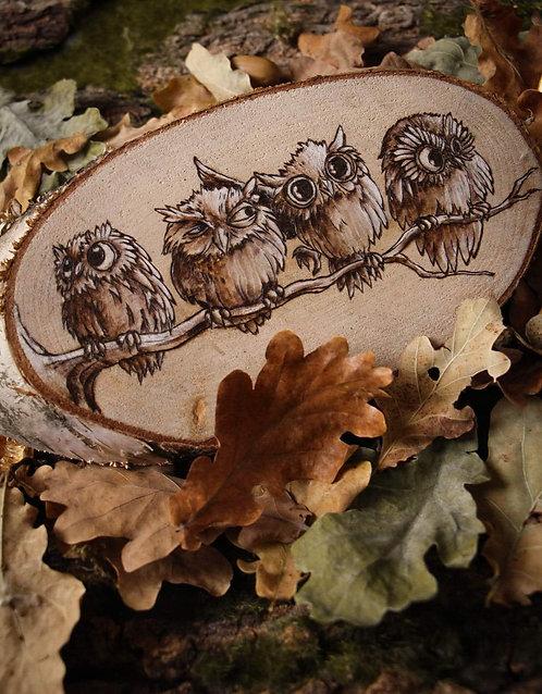 Owl Family (4)