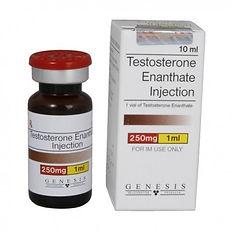 Testosteron Enanthate 250 mg10 ml.jpg