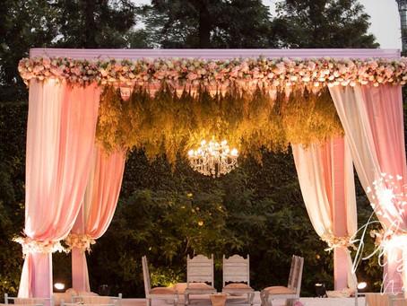 Mini Paradise Wedding By Plush!