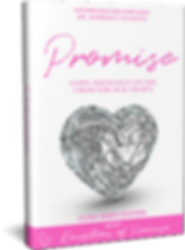 PROMISE 3D BOOK IMAGE.png