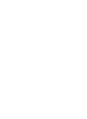prima-d_logo_wh.png
