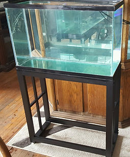 29 Gallon Aquarium and metal stand
