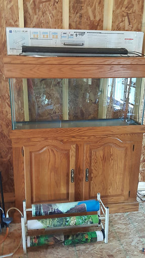 150 Gallon Aquarium, Stand and Canopy