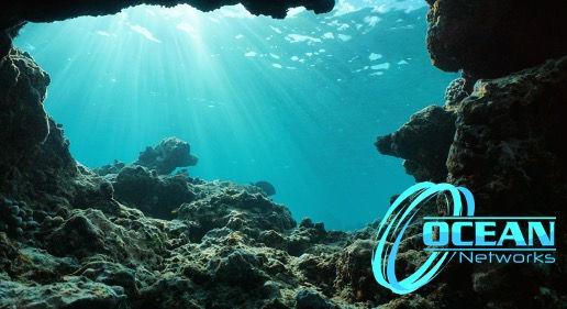 Ocean_Networks_Consulting.jpg