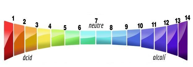 Quin és el pH recomanat en piscines?