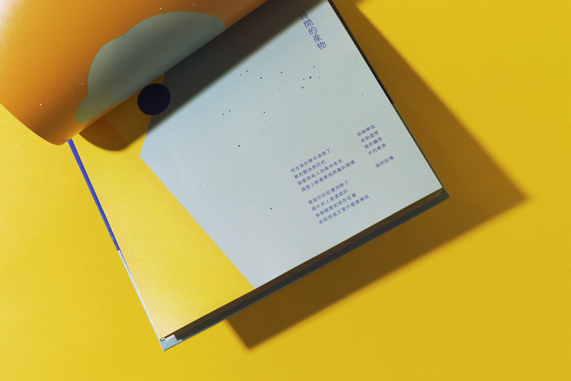 _DSC7360-1 copy