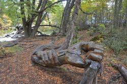 bosque tallado el bolson