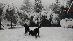 invierno en el bolson