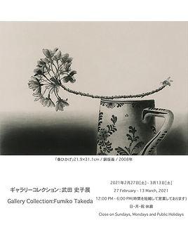 ギャラリーコレクション:武田 史子展