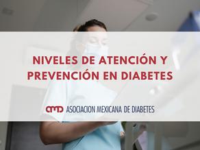 Niveles de atención y prevención en diabetes