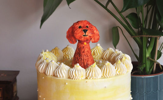 dog%20yellow%20cake_edited.jpg