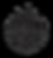 steamie logo.png