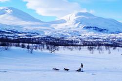Abisko National Park, Swedish Lapland