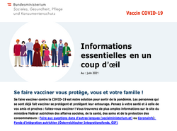Translation English-French for the Austrian Federal Ministry of Social Affairs, Health, Care and Con