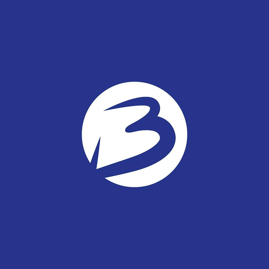 identité graphique logotype b-novacom