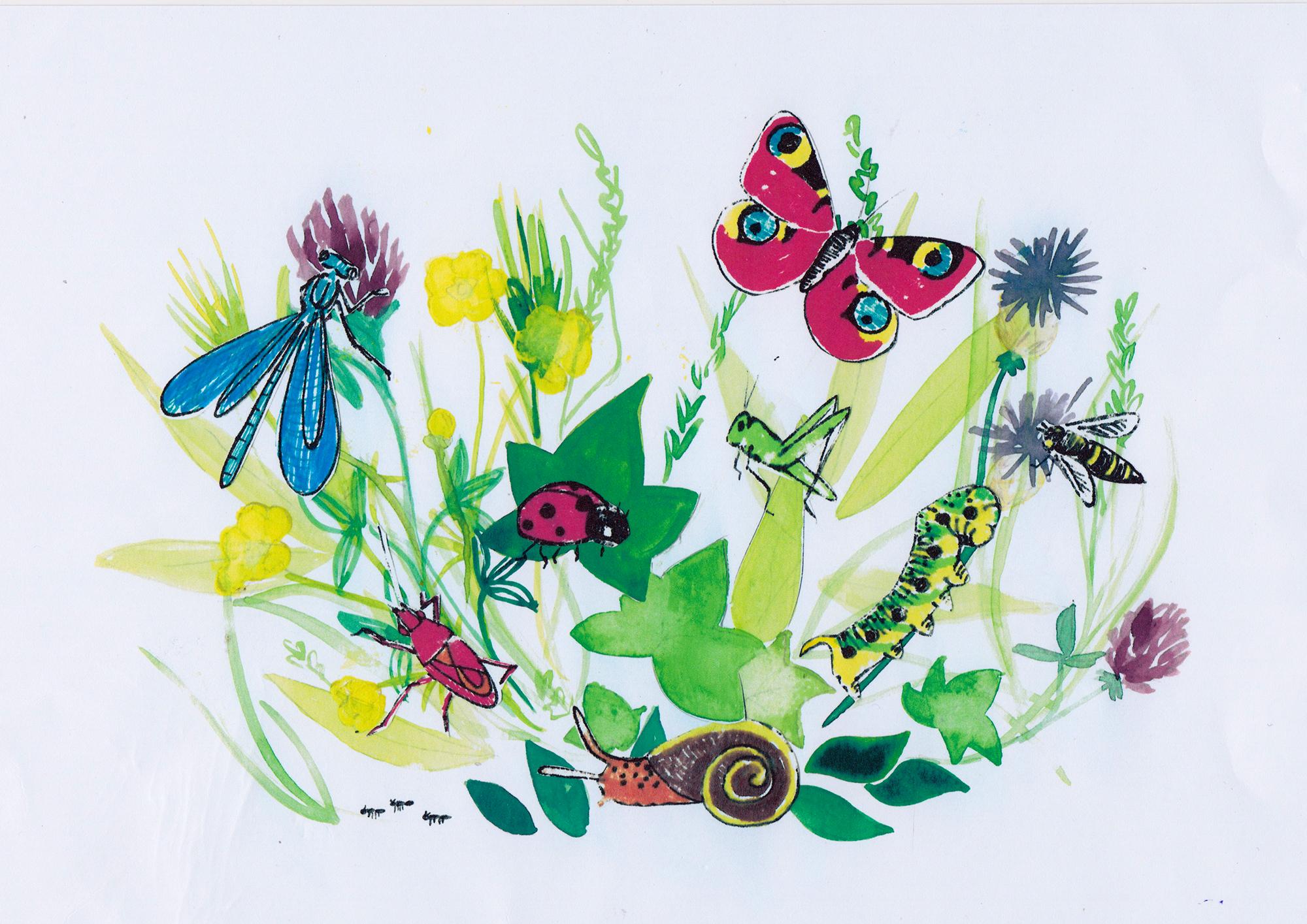 Mik & het kleine insectenboek