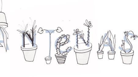 Waar belandt mijn plant? - PLANTENASIEL Houten
