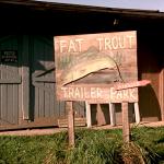 icon-fat-trout-150
