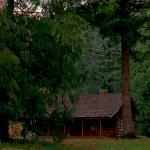 icon-log-lady-cabin-150