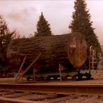icon-giant-log-150