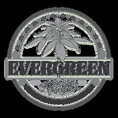 Evergreen Logo bw-02-02.png