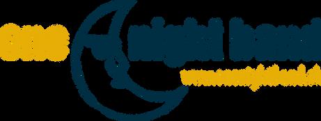01 Logo_one night band_webadresse_cmyk.p