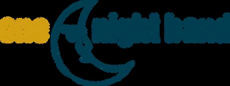 01 Logo_one night band_rgb.png