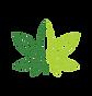 KindPay Logo.png