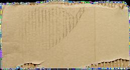 cardboardsign_edited.png
