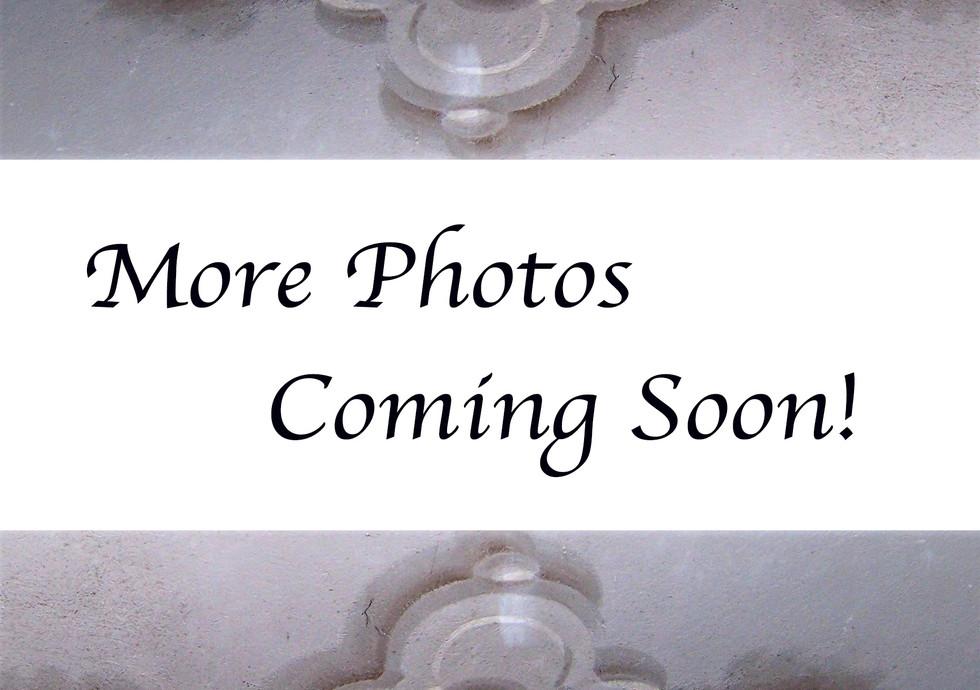 photos coming soon copy.jpg