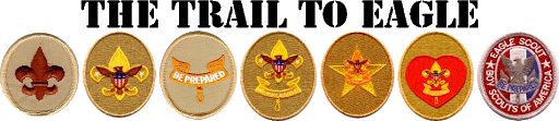scout badges.png