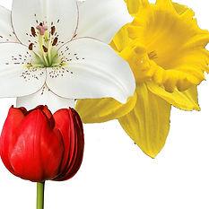 Easter flower home box.jpg
