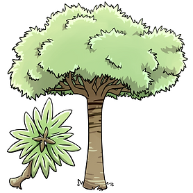 clover tree.png