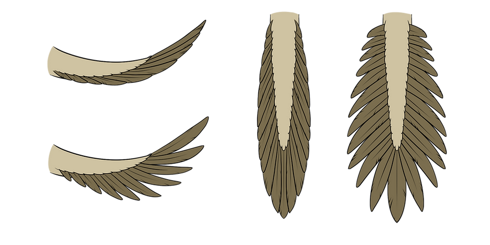 quill tail.png
