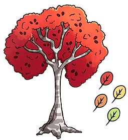 banded bow tree.png
