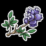 blecku_blossoms.png