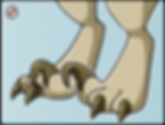 raptor_toes_by_wyngrew-dcpc3cx.png
