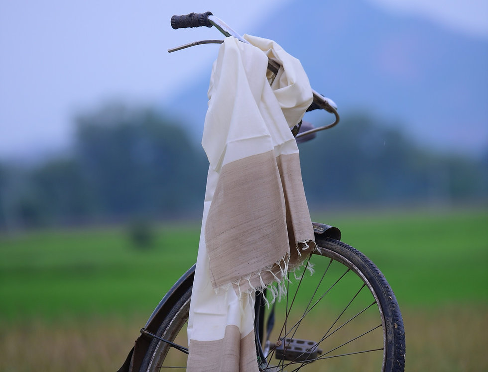 Handwoven Off-White & Natural Brown Tussar Stole