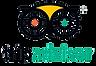 Logo TripAdvisor copia.png